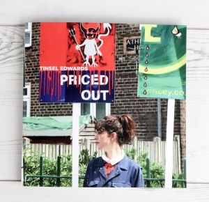 PRICED OUT, TINSEL EDWARDS, DUNLIN PRESS