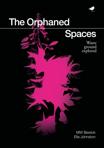 The Orphaned Spaces, MW Bewick and Ella Johnston published by Dunlin Press