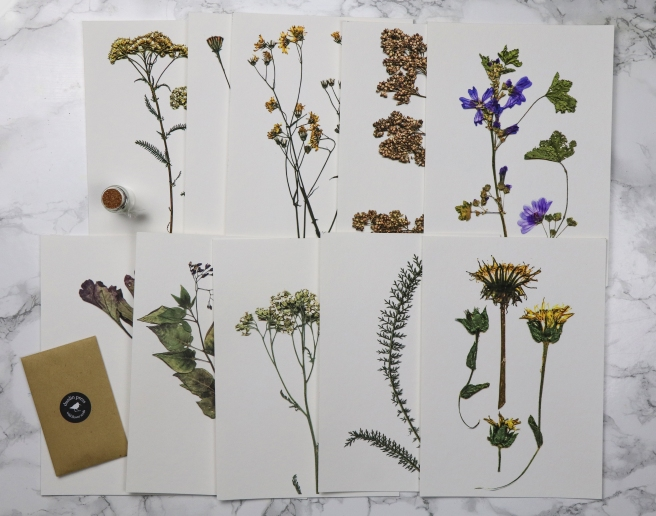 The Orphaned Spaces: Limited Edition pressed botanical fine art prints