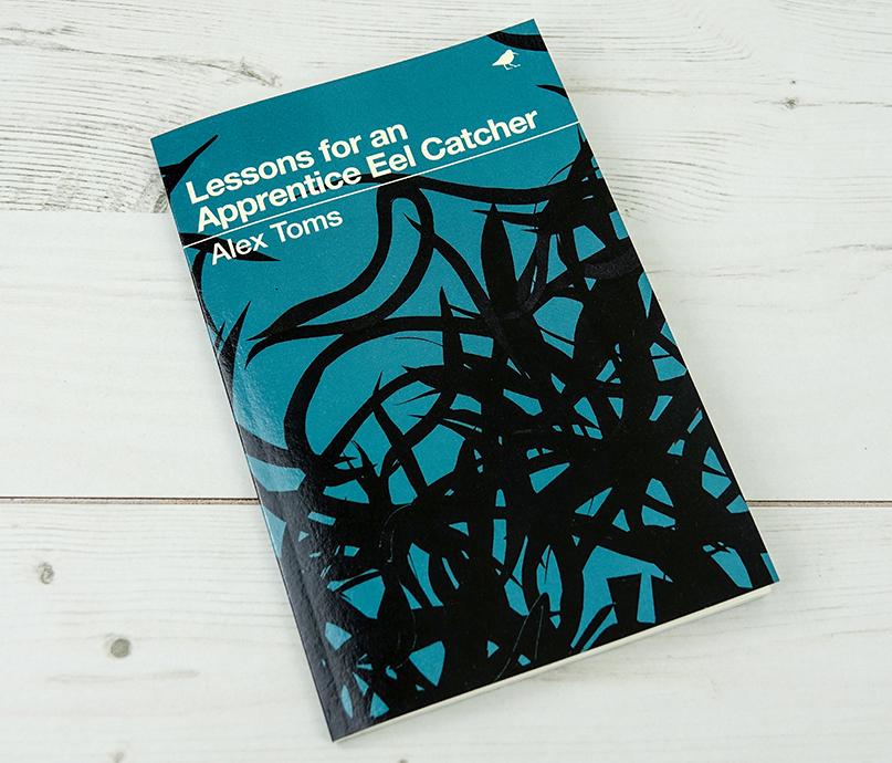 EelCatcher_bookcover_01LR